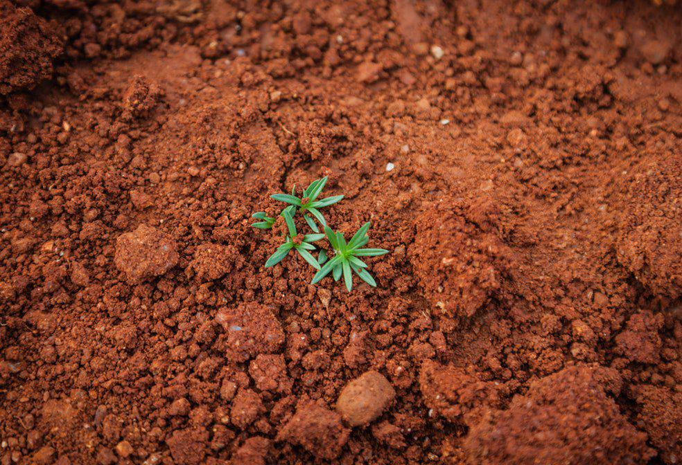 Soil investigation gets underway in Serbia