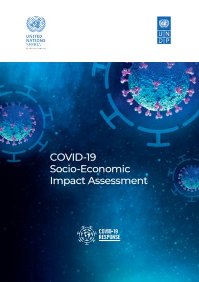 COVID-19 Socio-Economic Impact Assessment