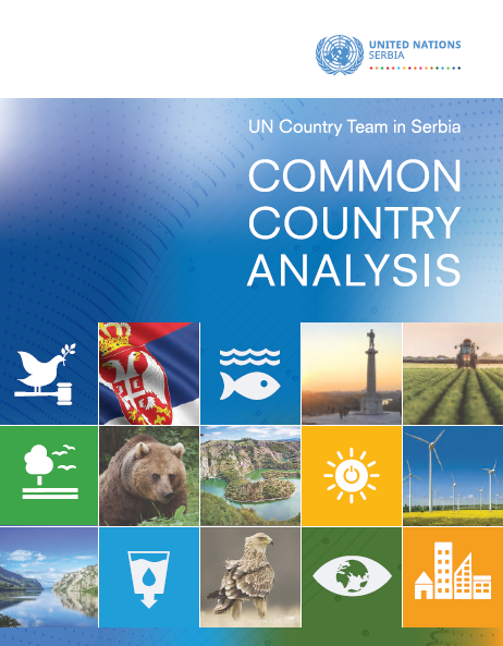 Common Country Analysis - Serbia